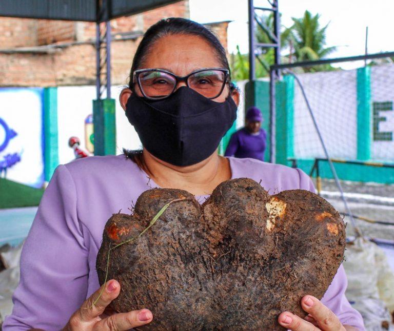 Catende realiza entrega de mais de 6 toneladas de alimentos a população carente